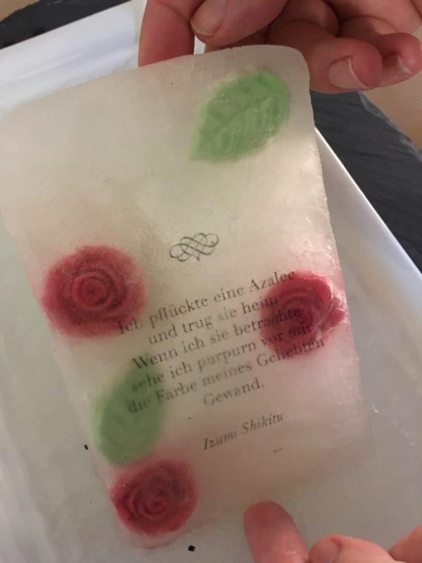 AZALEE: Eisbuch der Künstlerin annaloog; Ausstellung im Bodmanhaus Gottlieben, Oktober 2017; Foto: Bettina Schnerr