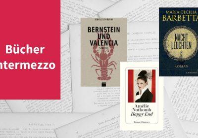 """Titelbild zu: """"Bücher Intermezzo VIII"""" mit den Titeln Amélie Nothomb - Happy End, Maria Cecilia Barbetta - Nachtleuchten, Sibylle Ciarloni - Bernstein und Valencia"""