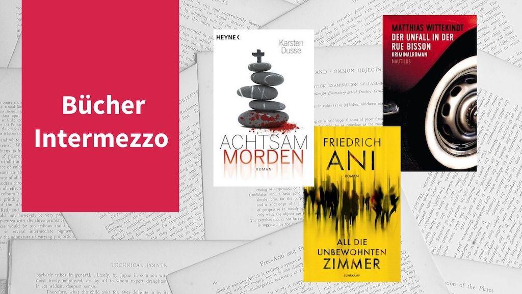 Header zum Bücher-Intermezzo X