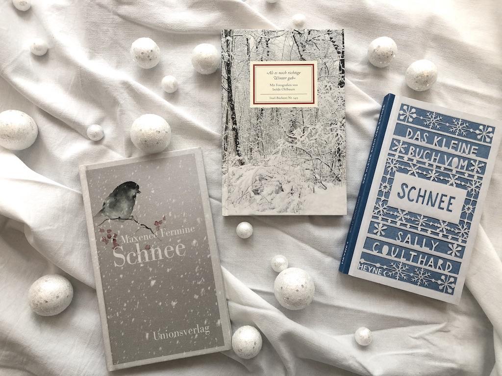 Bücher über Schnee und Winter; Foto: Bettina Schnerr