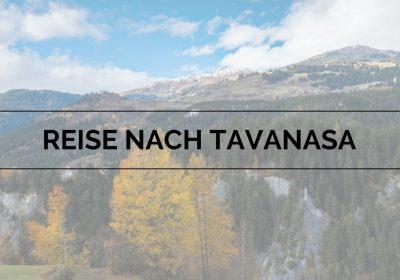 Reise nach Tavanasa: Über die Romane von Arno Camenisch