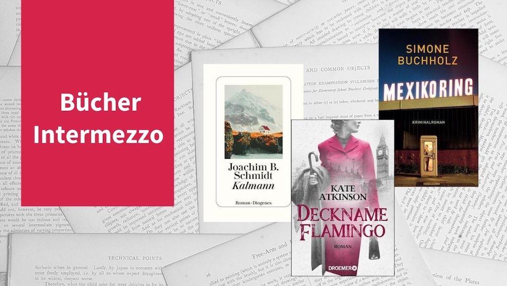 Intermezzo XVI mit Titeln von Simone Buchholz, Kate Atkinson und Joachim B. Schmidt
